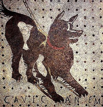 Pompeii_cave_canem