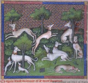 Livre_de_chasse_dogs