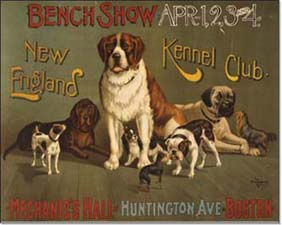 Boston_dog_show