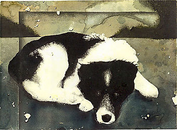 David_terry_dog_art