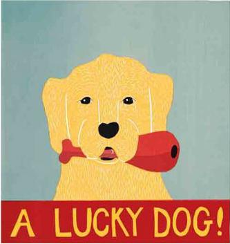 Lucky_dog_huneck