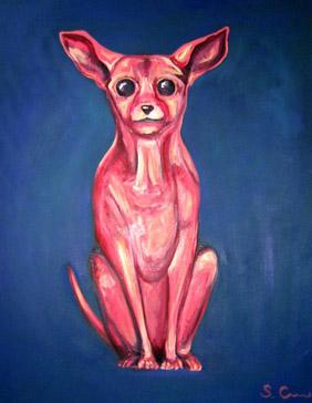 Sheila_cameron_pink_chihuahua