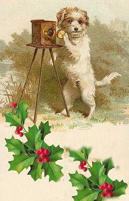Vintage-christmas-card-dog
