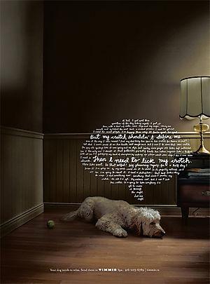 Timmie_dog_ad_crotch