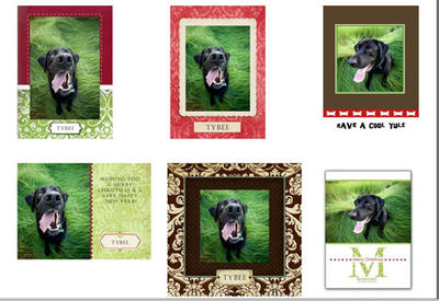 Custom_dog_christmas_cards