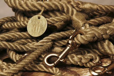 Found_rope_leash