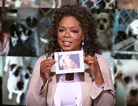 Oprah_shelter_ dog_gift_card