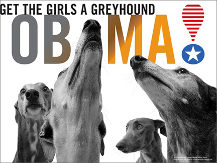 Greyhounds_for_obama