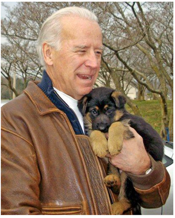 Joe_biden_puppy_2