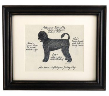 Portuguese_water_dog_print_2