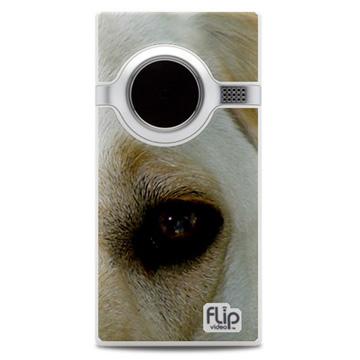 Flip_mino_dog_photo