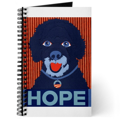 Porties-for-obama-journal