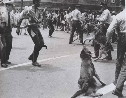 Civil_rights_birmingham_dogs_2