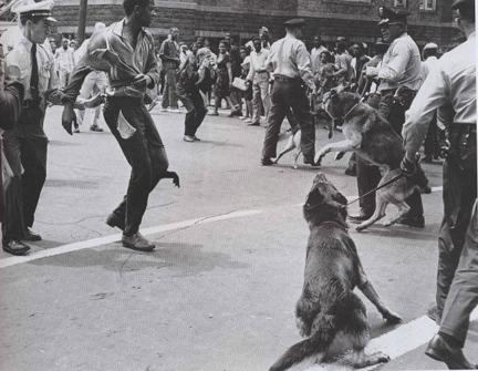 Civil_rights_birmingham_dogs_2