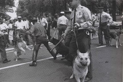 Civil_rights_dogs_birmingham_3