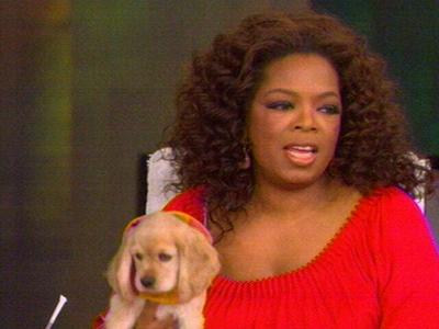 Oprah_dog_sadie_1