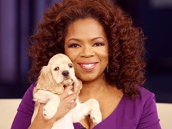 Oprah_dog_sadie_4