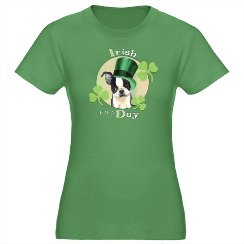 St_patricks_day_irish_terrier