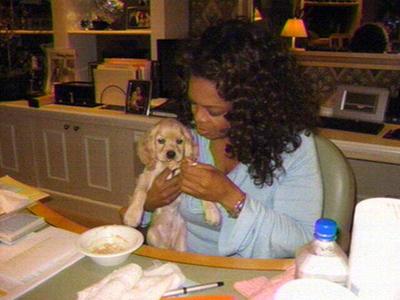 Oprah_dog_sadie_3b