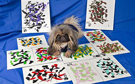 Ziggy_pekingese_painter