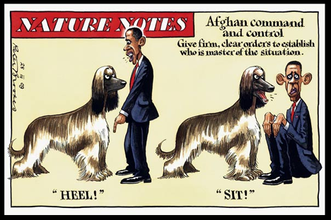 Obama_dog_cartoon_brooks