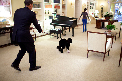 Barack_obama_walks_bo