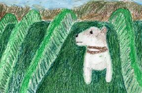 Dogvine