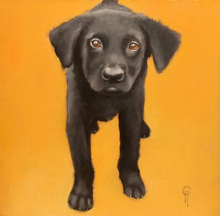 Clair_hartmann_downtown_dog_30
