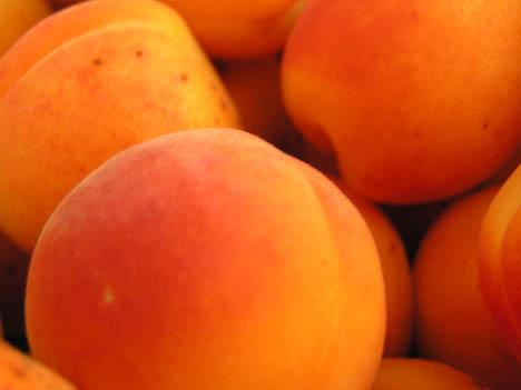 Apricots_close_up