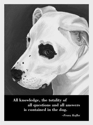 Dog_wisdom_cards_1