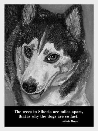 Dog_wisdom_cards_2a