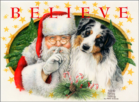 Dog art today australian shepherd christmas card m4hsunfo Choice Image