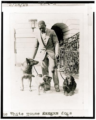 Herbert_hoovers_dogs