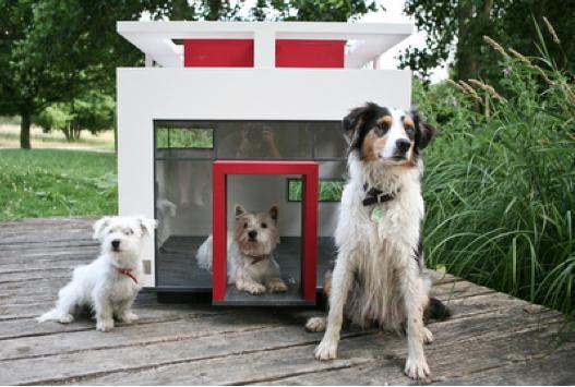 Bauhaus_doghouse