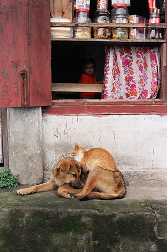 Slum_dog_leyden_3