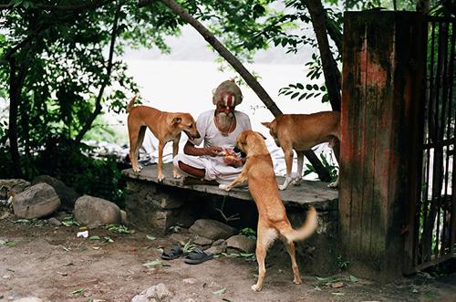 Slum_dog_leyden_4