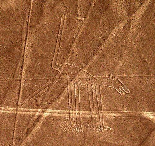 Nazca_dog
