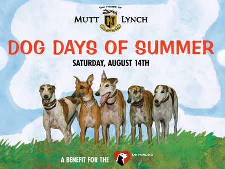 Mutt_lynch_dog_days_summer