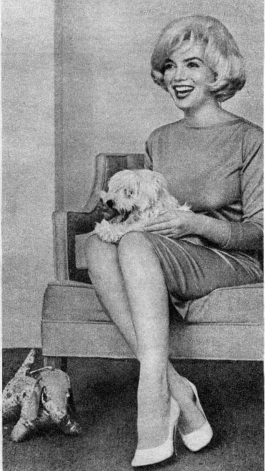 Marilyn_monroe_maf_dog_3