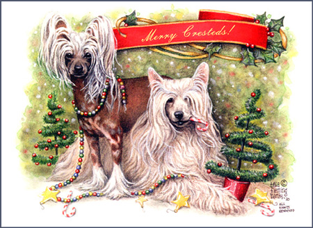 Chinese_Crested_Christmas_card