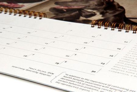 Pit_bull_calendar_4