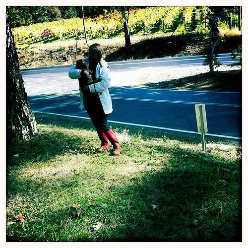 Moira_mclaughlin_darby_vineyard_3