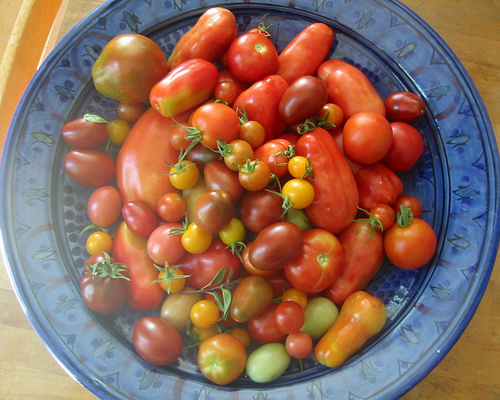 Tomatoes_post