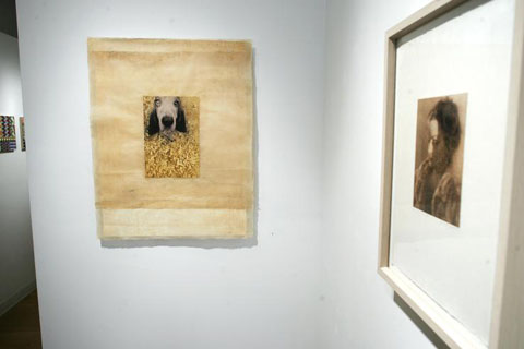 Nancy_diessner_dogs_3