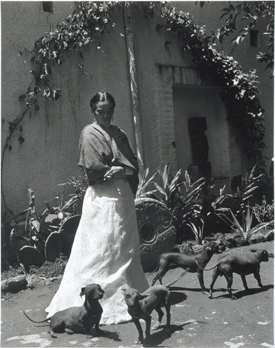 Dog Art Today: Frida Kahlo and Her Dogs by Gisèle Freund