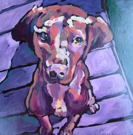 Kat_Corrigan_dog_Sasha