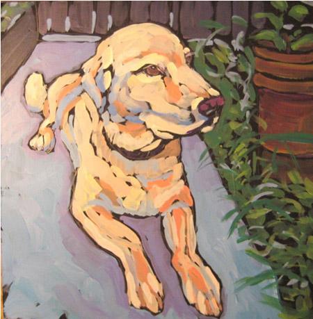Kat_Corrigan_dog_Max