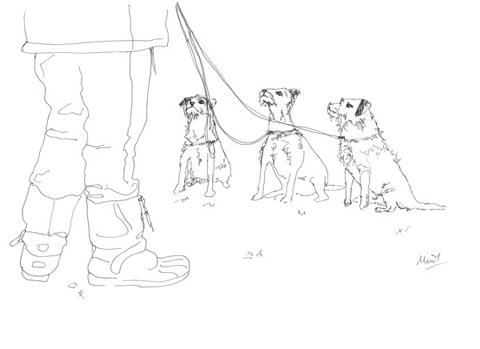 Minnie_teckman_dog_walk_4