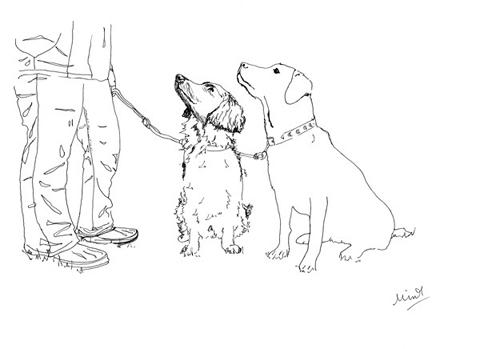 Minnie_teckman_dog_walk_7