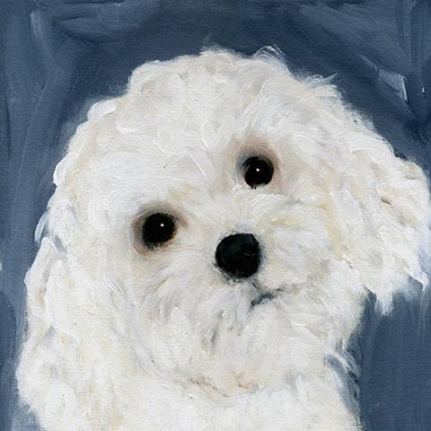 Leigh_jackson_dog_sweet